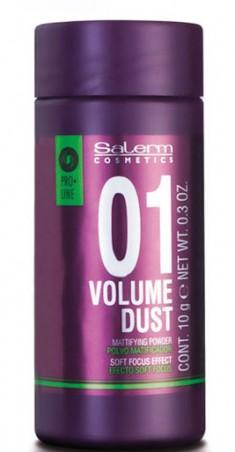 SALERM COSMETICS Пудра объем матирующая для волос / Volume Dust 10 г