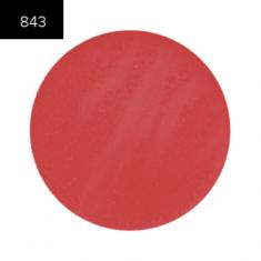 Помада в рефилах 2 гр. (Lip Color 2g.) MAKE-UP-SECRET 843 Плотный глянец