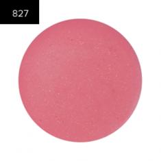 Помада в рефилах 2 гр. (Lip Color 2g.) MAKE-UP-SECRET 827 Прозрачный глянец (блеск)