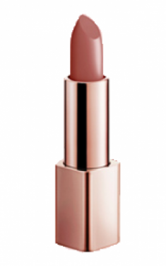 Помада для губ Berrisom G9SKIN FIRST V FIT LIPSTICK 05 ORANGE BROWN 3,5гр